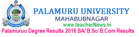 Palamuruu University Degree Results 2018 BA BSc BCom PU UG 1st, 2nd, 3rd Year Supply Results