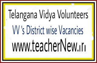 TS Vidya Volunteers District wise Selection / Merit list, Vacancies list 2018