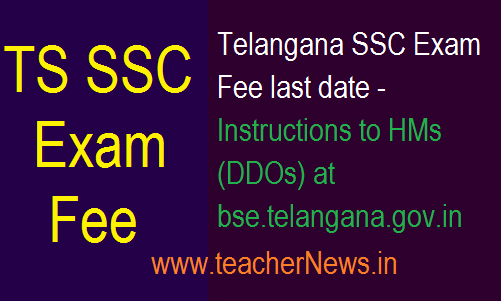 TS SSC Exam Fee last date 2019 - Instructions to HMs (DDOs) at bse.telangana.gov.in