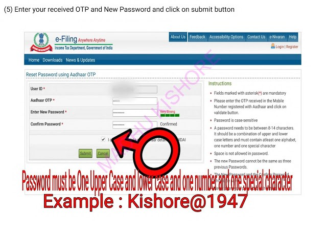 Income Tax e filling Password Reset Process 3