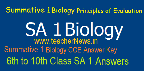 AP SA 1 Biology Objective Answer Key Sheet 6th, 7th, 8th, 9th, 10th Class Summative 1 Principles of Evaluation