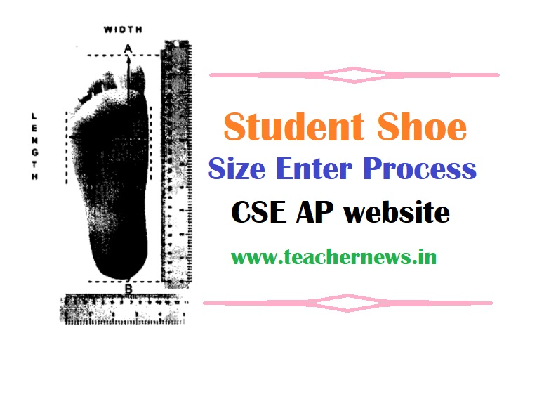 Student Shoe Size Enter Process in CSE Site for JVK Kit 2021-22 - CSE Guidelines in Telugu