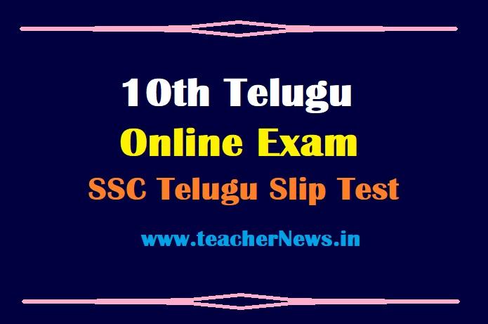 10th Telugu Online Exam June 2021 – AP SSC Telugu Grammar Slip Test Free with Key